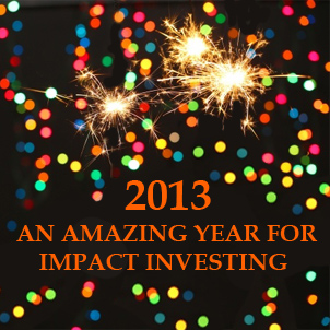Maximpact an amazing year for Imapct Investing