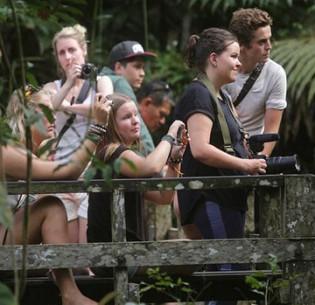Ecotourists