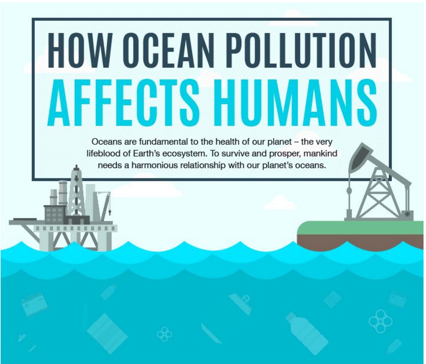 The Effects of Ocean Pollution on Marine Mammals