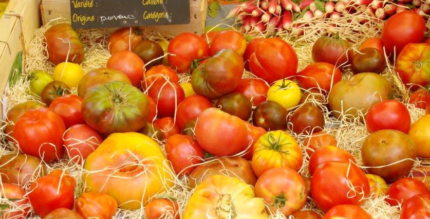 OrganicTomatoesFrance