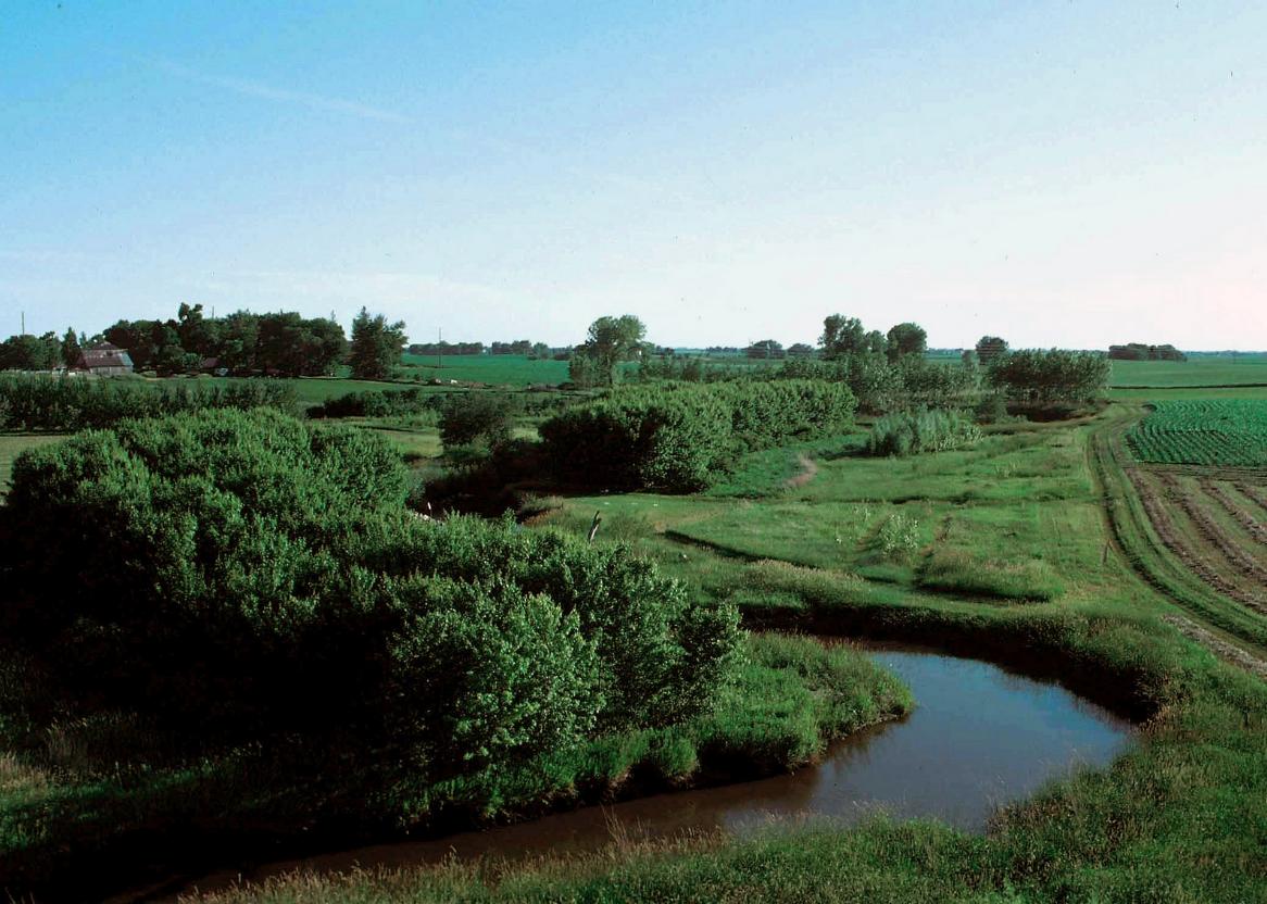 Agroforestry Iowa