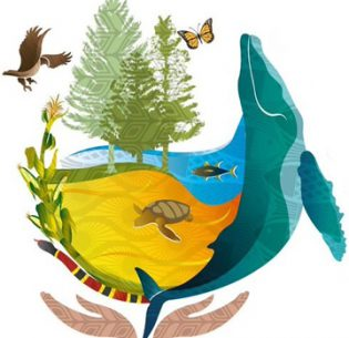 167-nations-act-to-protect-biodiversity