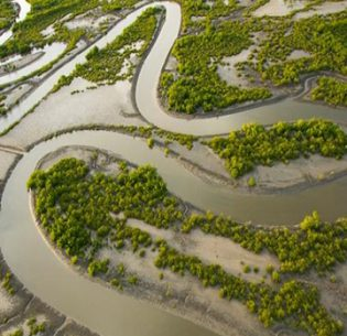 Disaster Risk Reduction- Wetlands Keep Us Safe