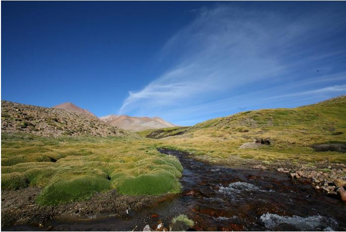 Argentina's President Mauricio Macri has developed the country's first National Water Plan to protect Argentine clean water sources like this stream in Mendoza Province in the western central part of the country. (Photo courtesy Mendoza Government Press)