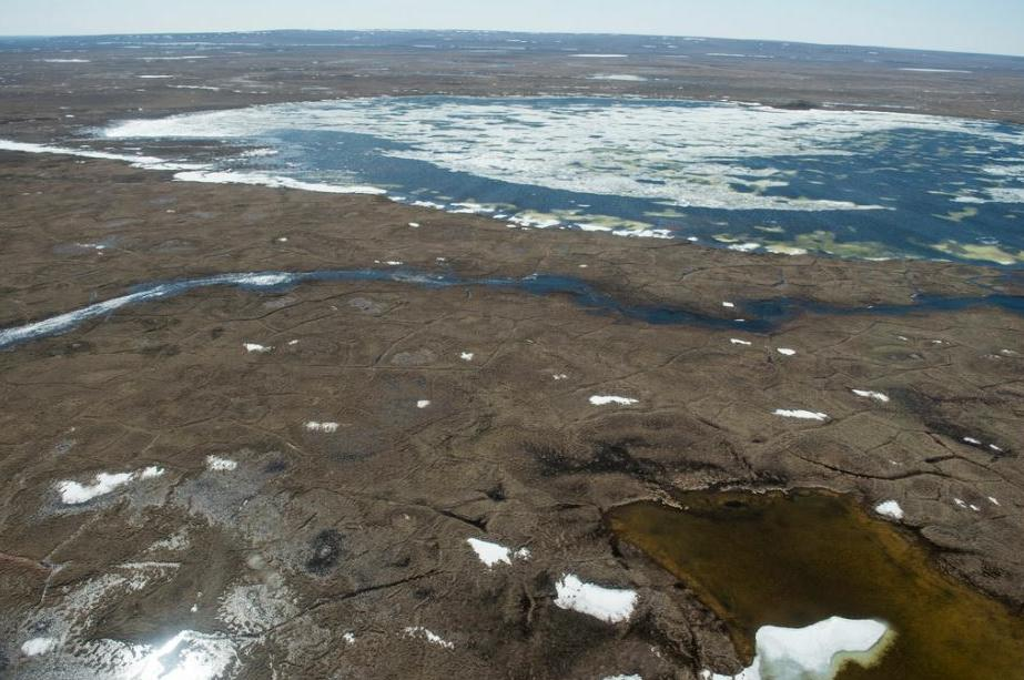 Oregon State University and University of Michigan researchers discovered that a key combination of sunlight and microbes can convert permafrost organic matter in the Arctic to carbon dioxide. May 28, 2016 (Photo courtesy Rose Cory, University of Michigan) creative Commons license via Flickr