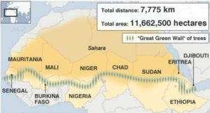 Drought-resistant trees are being planted in a wall across the continent of Africa in an effort to halt the advancing Sahara Desert. (Map courtesy Great Green Wall Initiative) Posted for media use