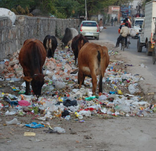 Waste Management and its Challenges