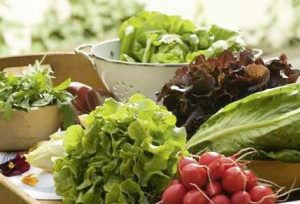 Organic salad greens (Photo courtesy European Commission) Posted for media use
