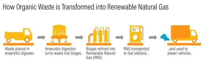 The five-step process of transforming wet organic waste into renewable natural gas is straightforward. (Image courtesy World Resources Institute) Creative Commons license
