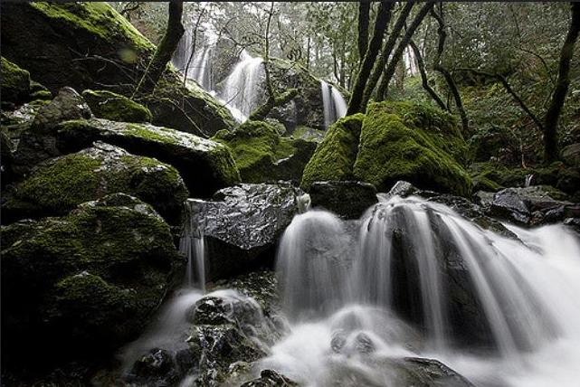 Cataract Falls, Mount Tamalpais, California March 1, 2009 (Photo by Alan Grinberg) Creative Commons license via Flickr