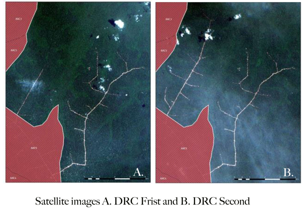 A. Satellite images showing growth of logging roads  during a period when IFCO's operations were suspended by authorities. This first image is from March 11, 2018. (Image courtesy Global Witness) B. This image from April 20, 2018 shows the extension of logging roads in the same location as the first image during a period when IFCO's operations were suspended by authorities. (Image courtesy Global Witness)