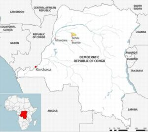 This map shows the location of IFCO's Baulu concession in yellow and the DRC's location in Africa. (Map courtesy Global Witness) Posted for media use.