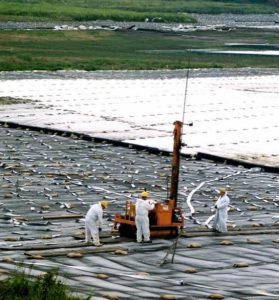 During the Wismut Uranium Mine Reclamation, the work crew rolled geofabric (white) and geogrid (black) over the uranium tailings, added sandbags to keep it from blowing around, and have planks of wood for their tractor, which is installing short wick drains to drain excess water pressure from the tailings. July 21, 2012, Gemeinde Hilbersdorf, Thuringia, Germany (Photo by Gord McKenna) Creative Commons license via Flickr.