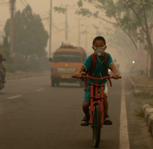 A student cycles to school wearing a mask to protect him from the smoke from burning peat that blankets the city of Palangka Raya, Central Kalimantan, Indonesia. October 16, 2015 (Photo by Aulia Erlangga / CIFOR) Creative Commons license via Flickr