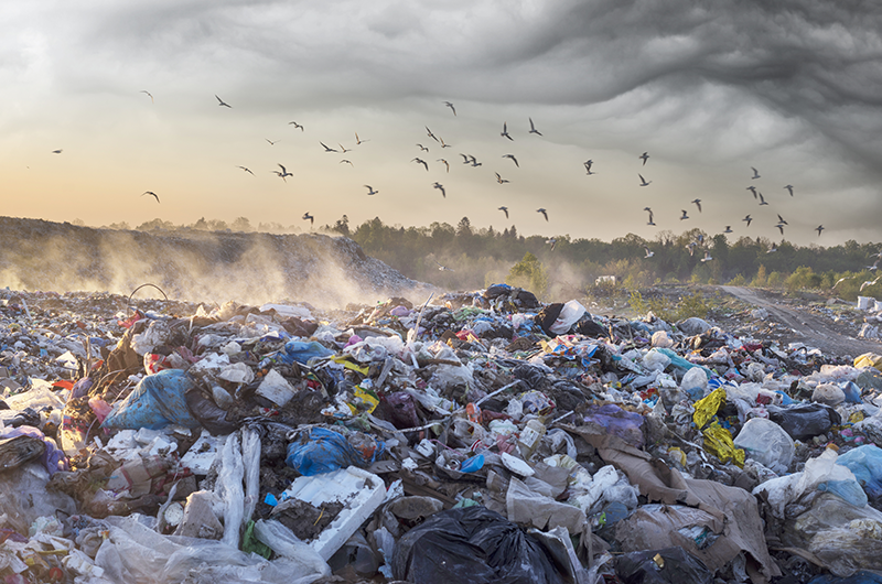 The world's waste problem