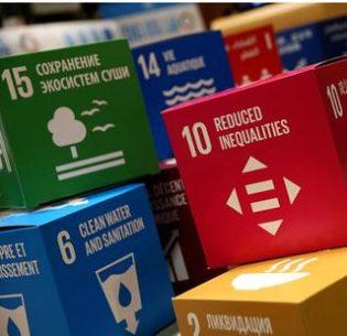 SDGblocks