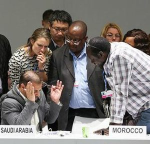 COP25 delegates engage in informal consultations on the development and transfer of technologies. December 6, 2019, Madrid, Spain (Photo courtesy Earth Negotiations Bulletin)