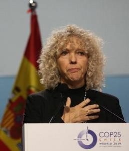 Jennifer Morgan, executive director, Greenpeace International, addresses the delegates at COP25, Madrid, Spain, December  2019 (Photo courtesy Earth Negotiations Bulletin)