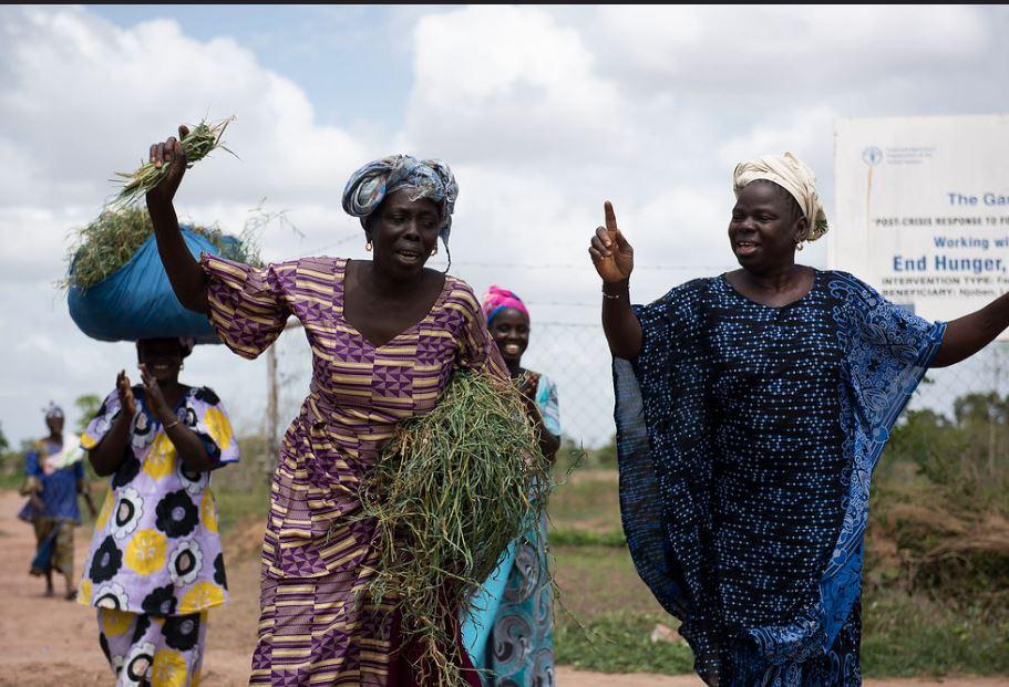 WomanWorkGambia