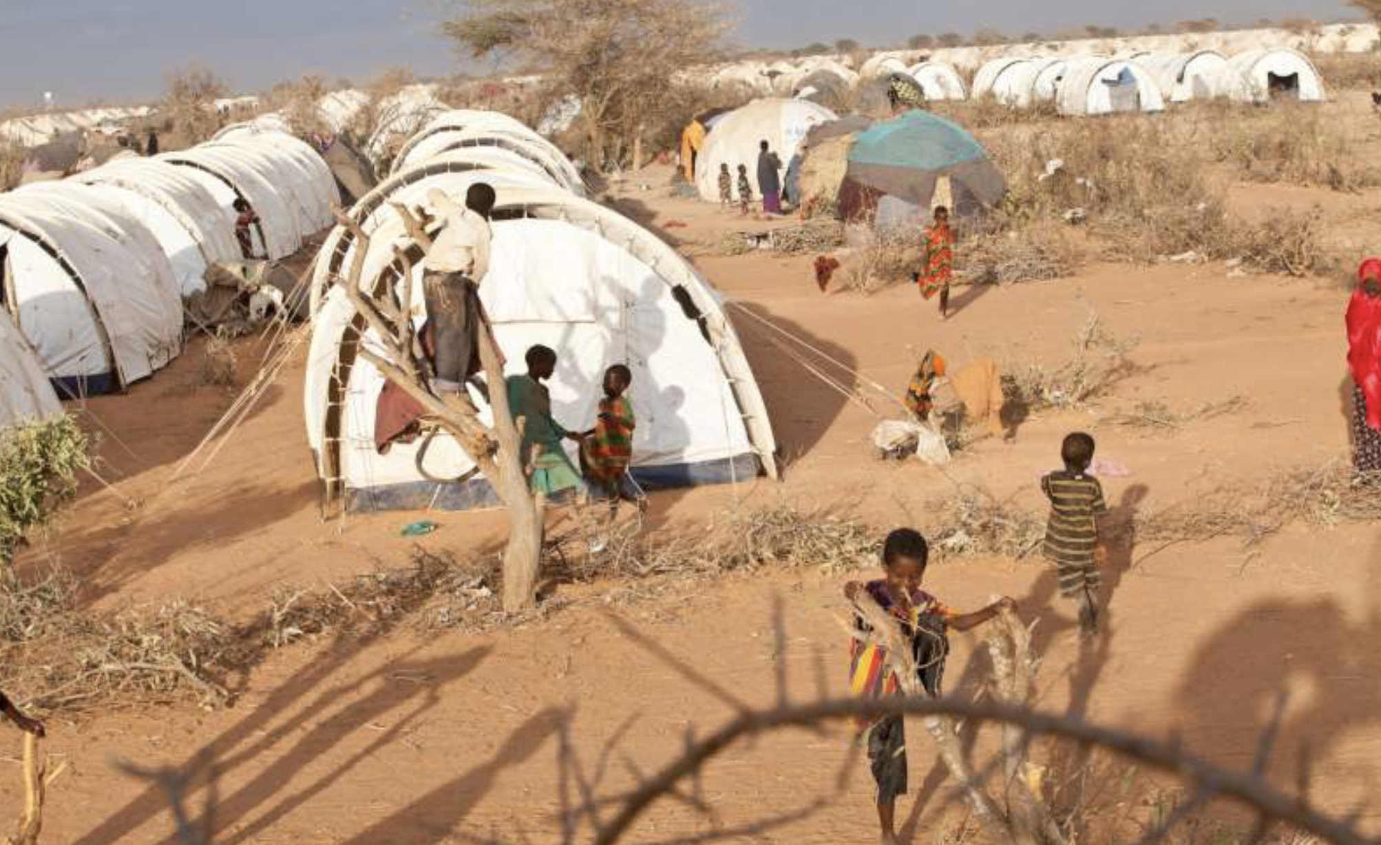 Somali refugee children play around their shelters in Kenya's Dadaab refugee camp, third largest in the world. 2015 (Photo by B. Bannon courtesy UNHCR)