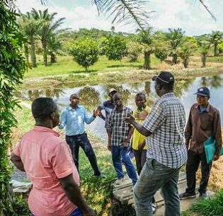 A community group in Kisangani, Democratic Republic of Congo makes plans for a fish farming project that will help with water management. February 7, 2020 (Photo by Axel Fassio courtesy CIFOR) Creative Commons license via Flickr